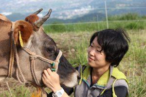 島崎さんと牛
